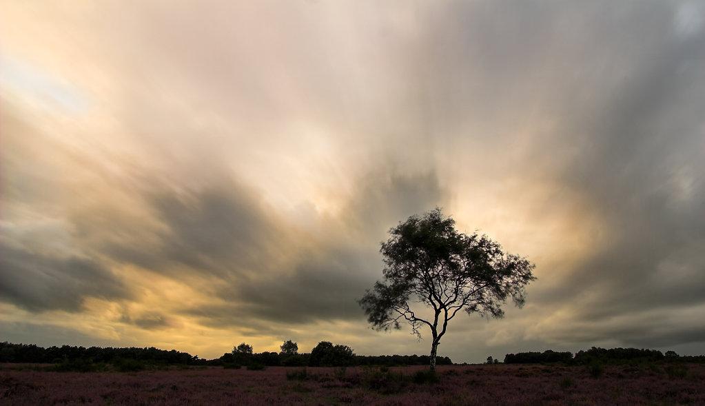 Overdrijvende wolken