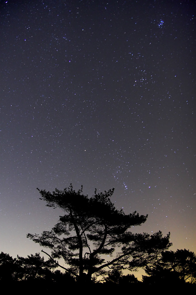 Den met sterrenhemel